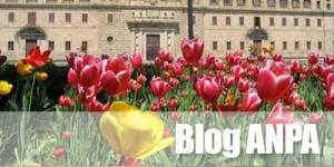 Blog ANPA
